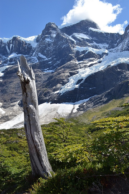 Chile - Torres Del Paine - by Philippe R-A, via Flickr