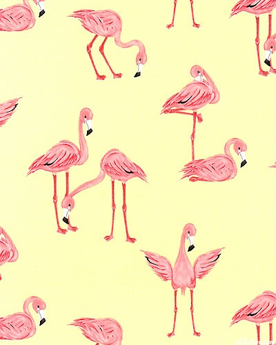 Flamingos - Pineapple $10.95