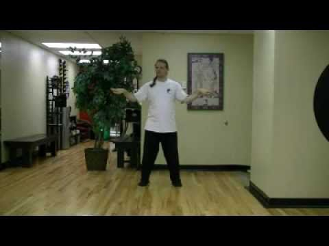 Michael Paler Warm Up for Tai Chi 100 Day Challenge