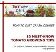 Website on growing tomatoes (planting, staking, fertilizing, identifying diseases, etc.) More helpful info on growing tomatoes at http://www.tomatodirt.com/growing-tomatoes.html.
