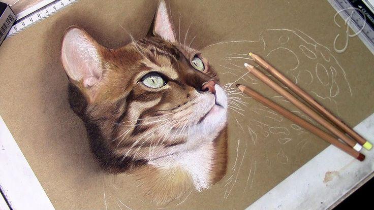 "Beautiful Bengal Cat ""Loki"" - Pastel Drawing   Speed Art Painting"