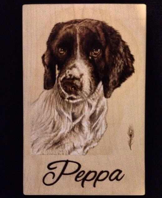 Dog portrait pyrography woodburning by Martin peacock