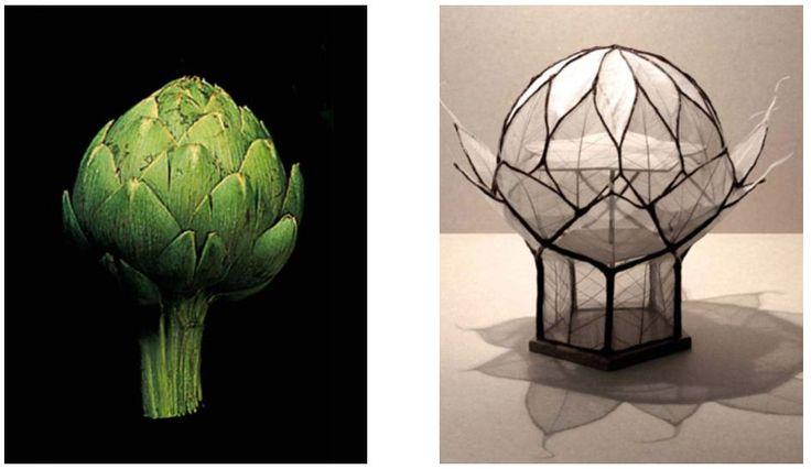 biomimicry cocoon - Pesquisa do Google