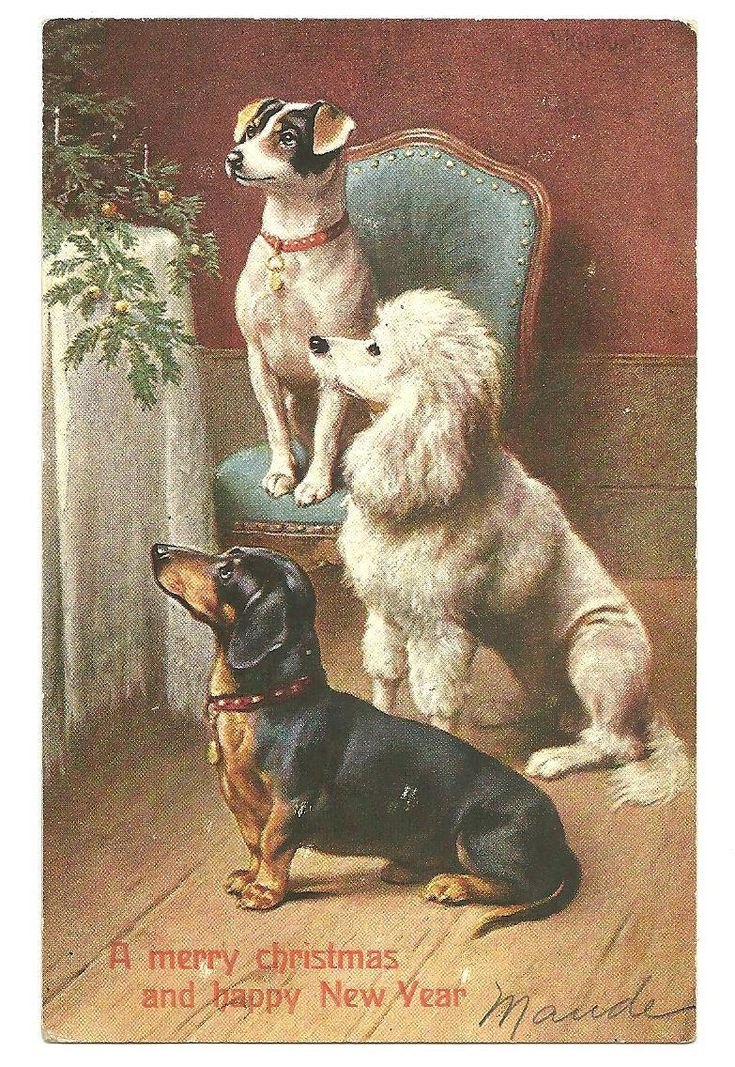 vintage postcard More