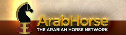 Region 3 - 2014 :: Arabian Horses, Stallions, Farms, Arabians, for sale - Arabian Horse Network, www.arabhorse.com