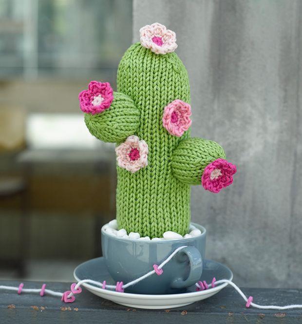 17 mejores im genes sobre cactus rboles y setas en - Informacion sobre los cactus ...