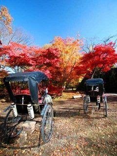 藤村文学の舞台としても有名な長野県の城下町小諸を人力車で巡りませんか 気分はまるでお殿様やお姫様 笑顔になれるサービスも満載ですよ tags[長野県]