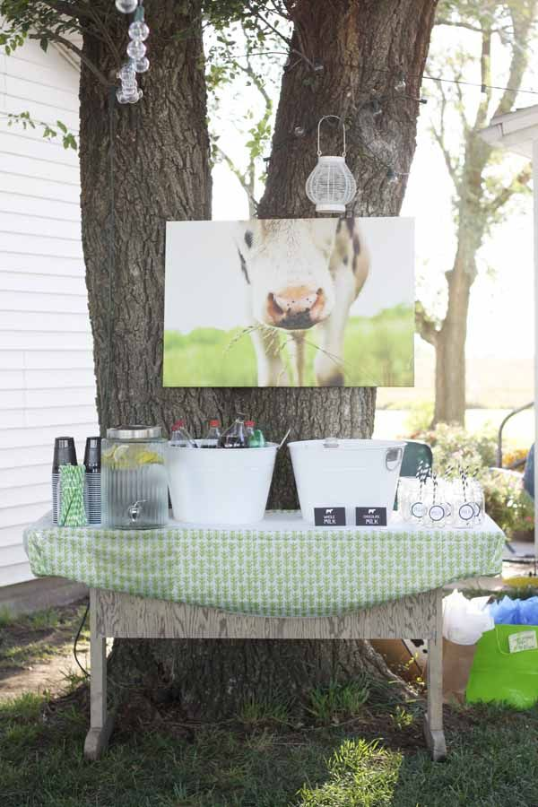 Cutest Cow Birthday Party ideas ever!