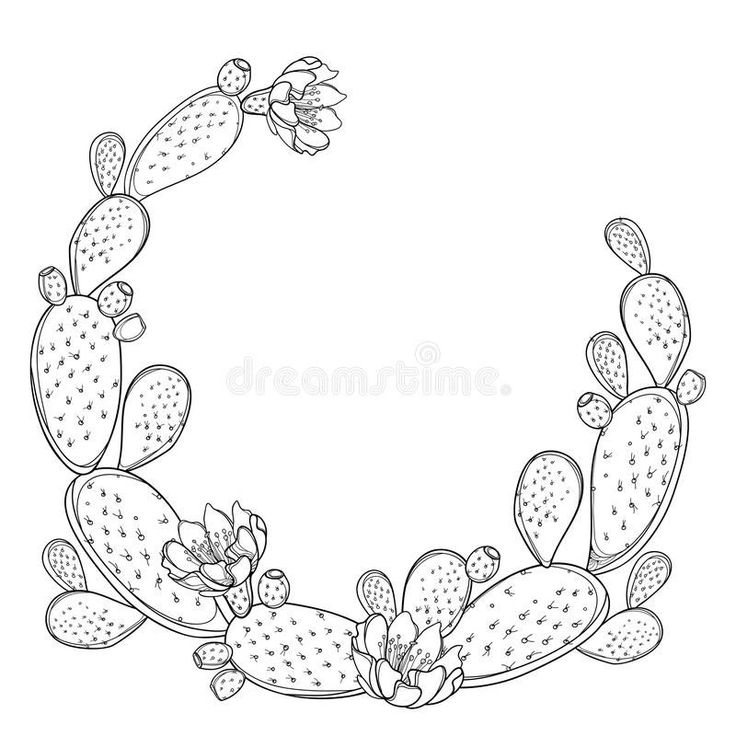 Newest No Cost Cactus Flower outline Thoughts Cacti and ...  Cactus Flower Outline