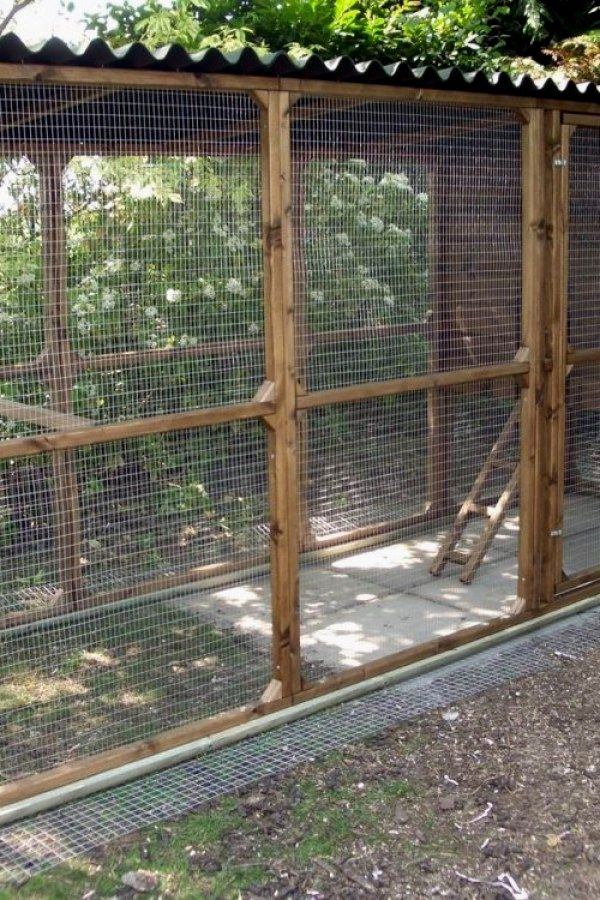 Awesome Diy Chicken Coop Plans You Should Build For The Farm