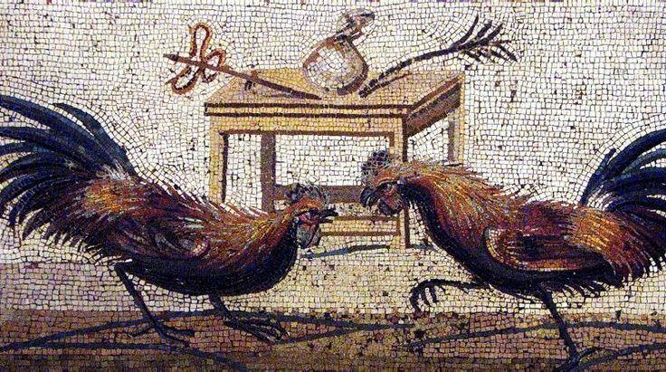 Bataille de coqs à Pompéi