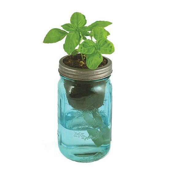 "A vintage quart-sized mason jar – outfitted with a passive hydroponics system known as ""wicking"" –brings water up to the plant roots for a simple,"