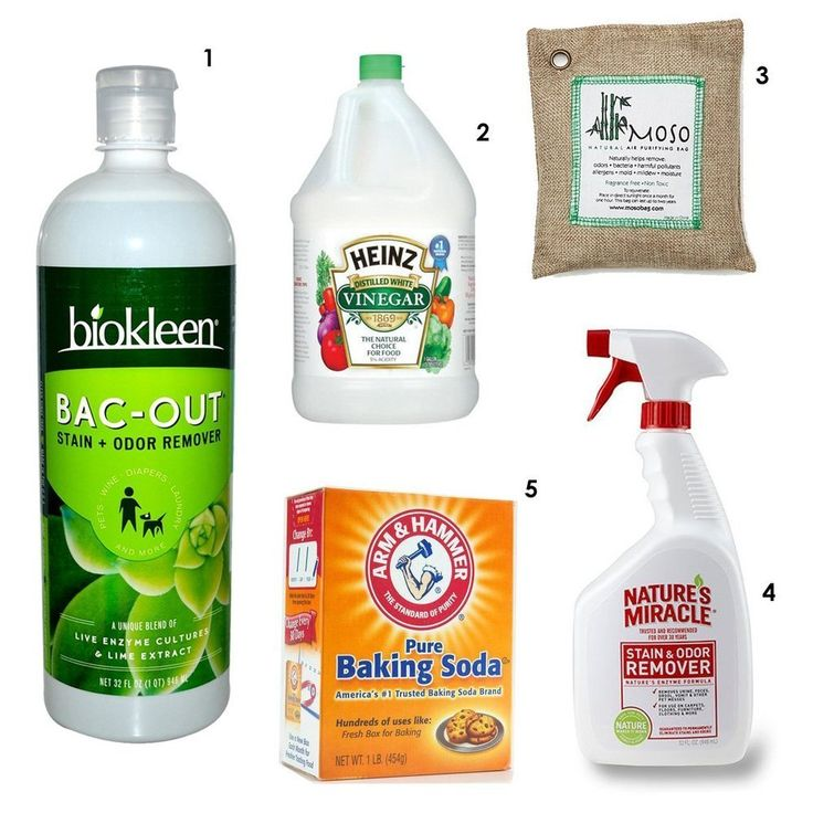 Rethink The Stink 5 Odor Removing Products No Home Should