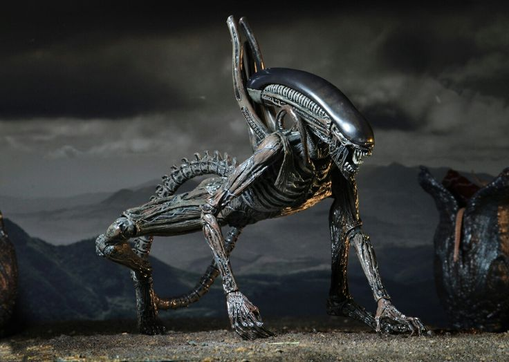 New Alien 2017
