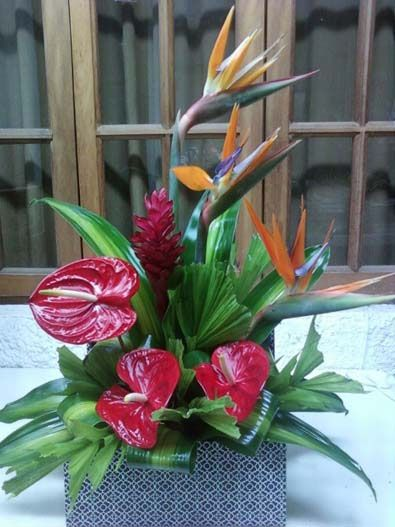 Best tropical floral design by mia bella images on