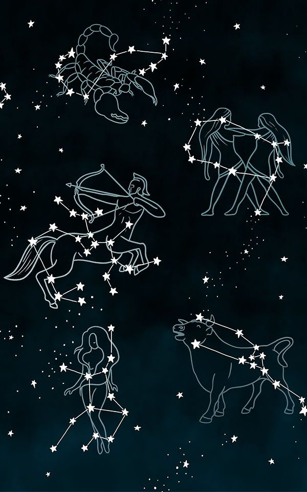 Customizable Constellation Wallpaper For Your Zodiac Sign Murals Wallpaper Constellations Zodiac Constellation Art Star Constellations