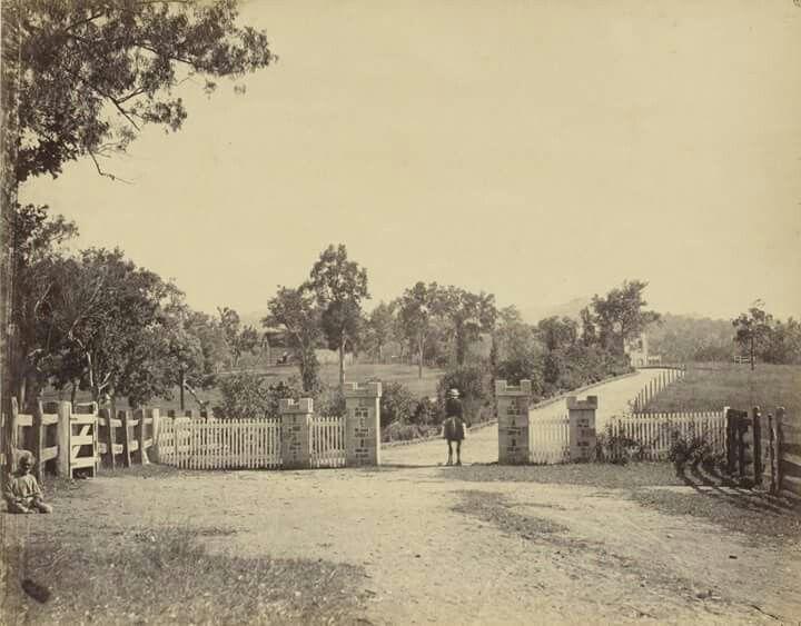 Yulgilbar Station near Grafton,New South Wales.