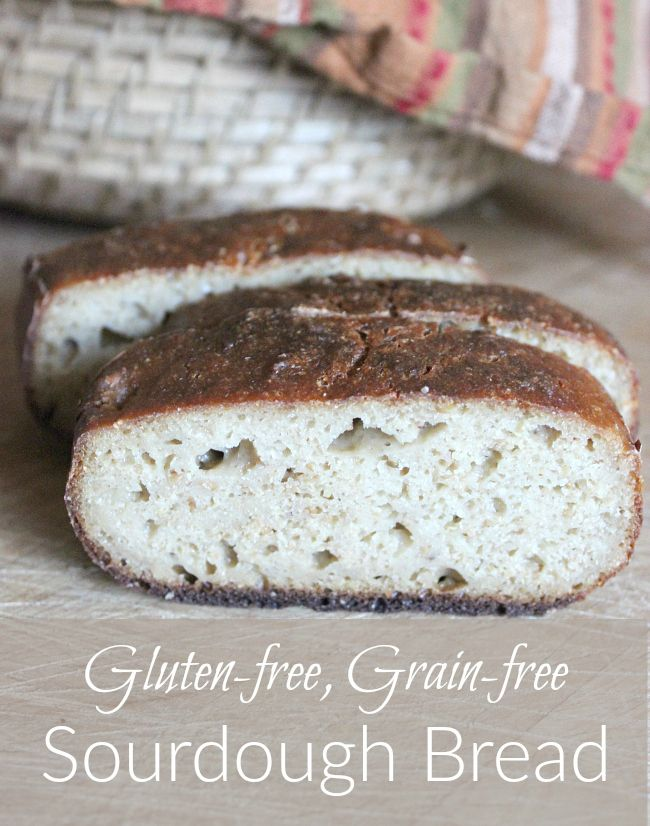 Gluten free - grain free sourdough