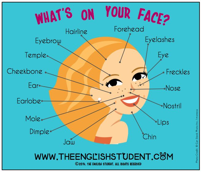 What's on your face: #vocabulary of facial features. The English Student, www.theenglishstudent.com