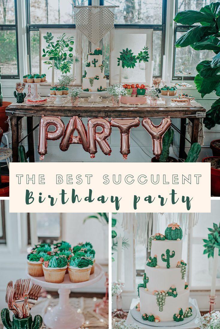 A Botanical Birthday Boho Birthday Party Cactus Party Decor Cactus Cupcakes