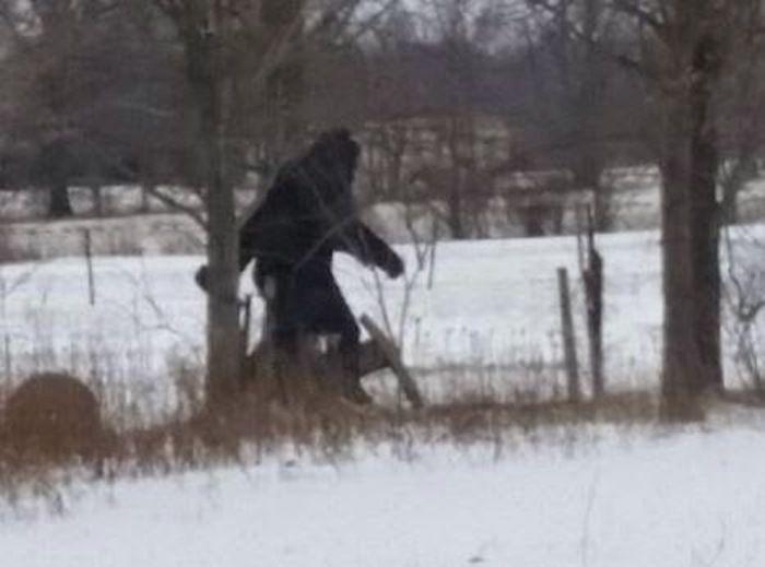 New Bigfoot Photo from Ohio