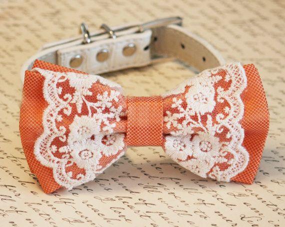 Orange Dog Bow Tie, Vintage Wedding, Pet wedding accessory,Wedding accessory, boho wedding, Victorian wedding on Etsy, $35.50