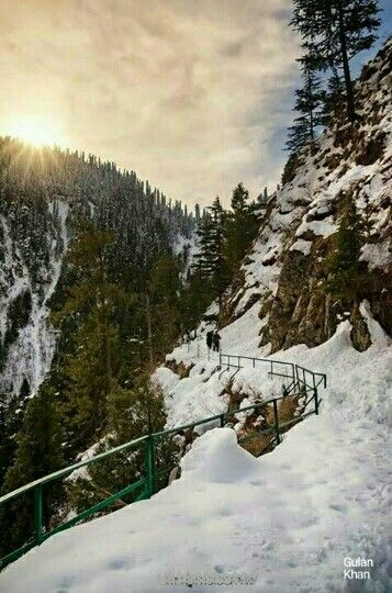 A sunny day beautiful pipeline trek Ayubia to Dongagali , near Murree hill station Pakistan