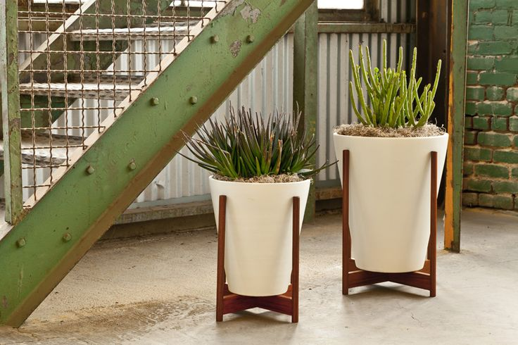 Modernica Case Study Ceramic Funnel planter With Wood Stand