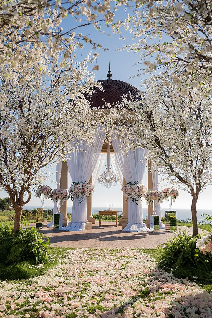 Spectacular Cherry Blossom Tree Lined Wedding Aisle Blossoms And Blooms Of Blush Pink White Cream By Nisie S Enchanted Florist