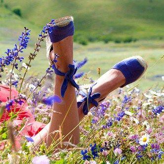 Enjoying the wildflowers...