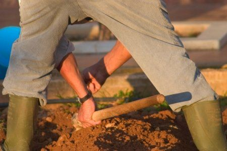 To improve clay soil and make it easier to work, add coarse sand and organic matter; such as, humus, compost, manure or leaf mold.