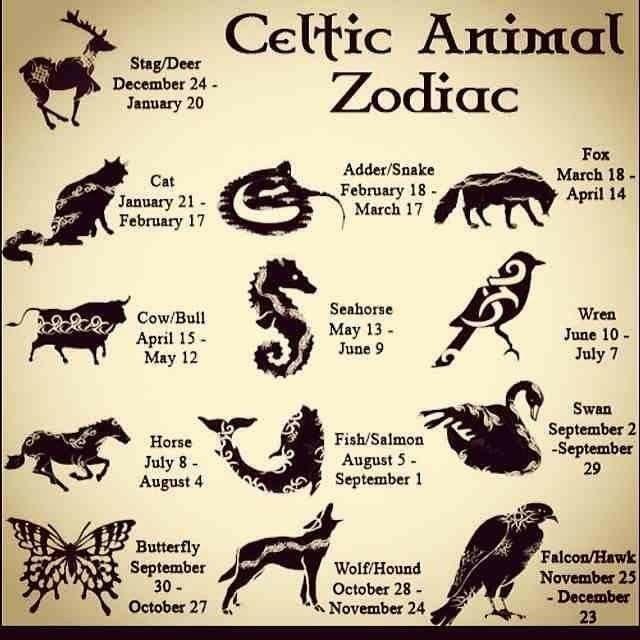 Horoskop – Astrologie – Sternzeichen – Zodiac