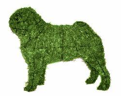 pug topiary. non-negotiable.