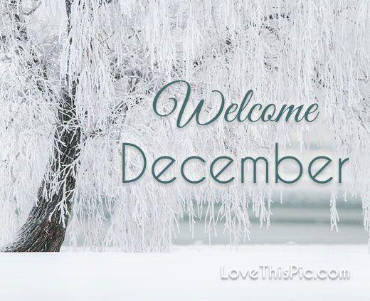 Welcome December december december quotes hello december happy december welcome december hello december quotes december quote welcome december quotes first day of december quotes