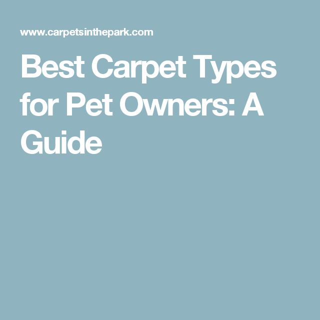 25 Best Ideas About Carpet Types On Pinterest Types Of Carpet Types Of Rugs And Carpet For