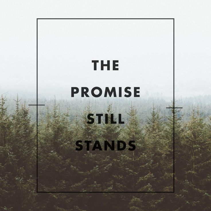 Best Inspirational Quotes And Scriptures Images On Pinterest - Find your elevation