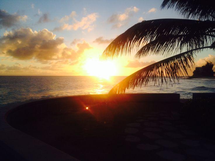 Barbados at sunset 11112014 sydney opera house opera