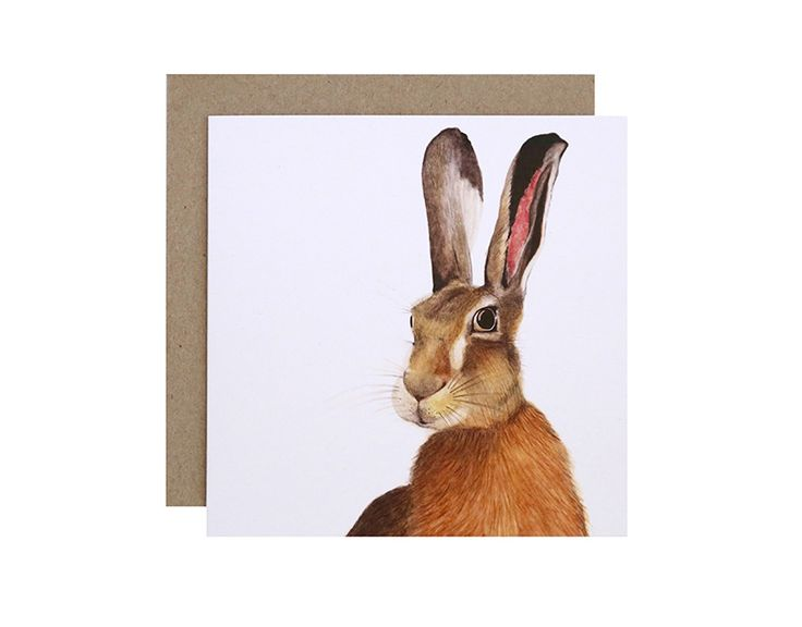 Harry the Hare Greeting Card  Birthday, Get Well Soon or Congratulations?  For Me By Dee greeting cards are perfect for any animal lover, for any occasion!  Created and printed in Melbourne, Australia