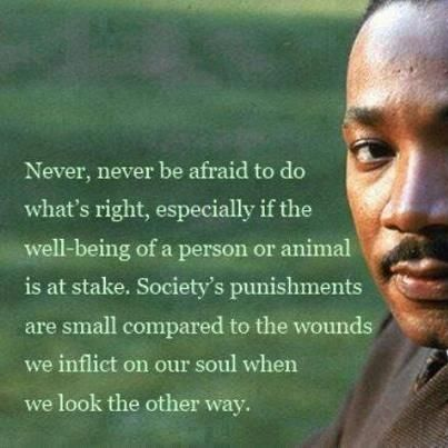 Never, never be afraid to do what's right, especially if the well-being of a person or animal is at stake. Society's punishments are small compared to the wounds we inflict on our soul when we look the other way. Dr. King