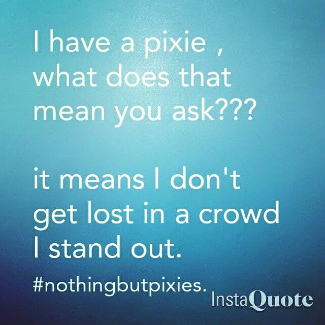 Nothing but pixies