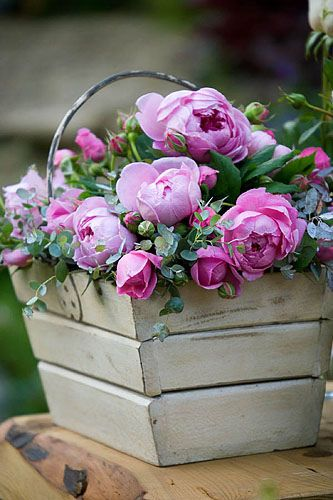 Basket of roses (Wildlife trust garden, chelsea 2005) by Clive Nichols