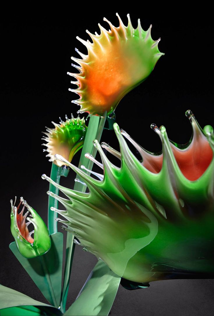 Cet artiste fascinant manipule le verre avec élégance pour créer des fleurs au gigantisme saisissant