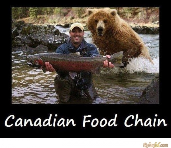 Canadian food chain