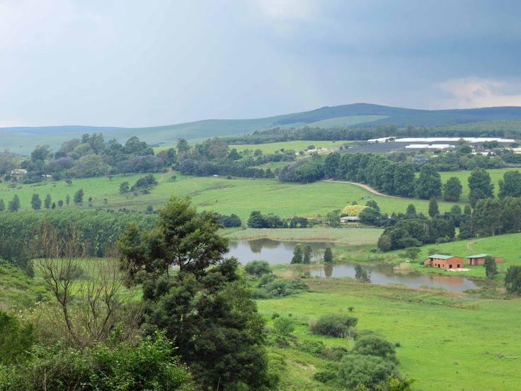 "KZN Midlands, South Africa in the ""green season"". #placestogo Midlands Meander, KZN, South Africa www.midlandsmeander.co.za"
