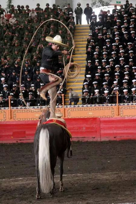 My cousin can do that! The people of Mexico: the awesome skills of a charro at a charreria!