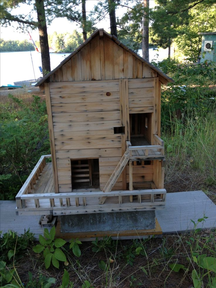 Squirrel House Squirrels Pinterest Squirrel House