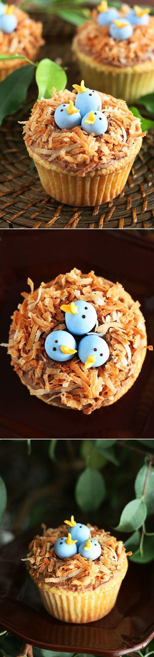 Cute bird nest cupcakes