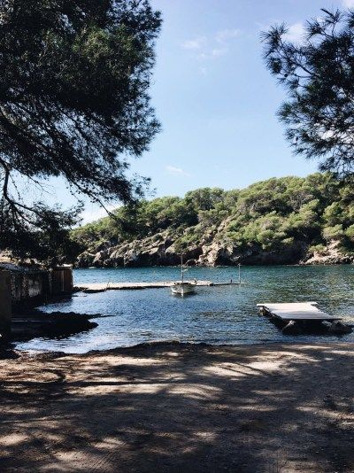 El Bigotes - Ibiza: beach bars, restaurants & hotels | W DISTRICT
