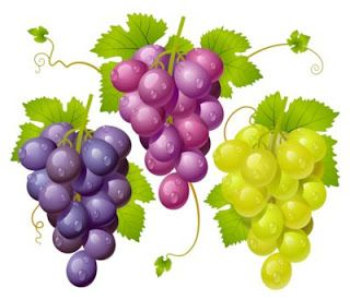 Ilustraciones en 3D de racimos de uvas - Grapes | Banco de Imágenes (shared via SlingPic)