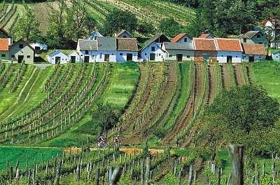 Weinviertel - Kellergasse